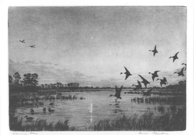 Drawing in pencil showing group of geese flying over a small body of water.