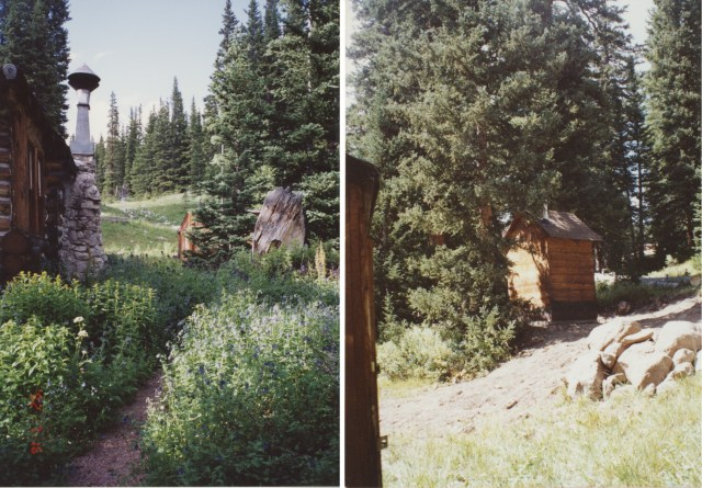 cabin and outhouse surrounded by aspens