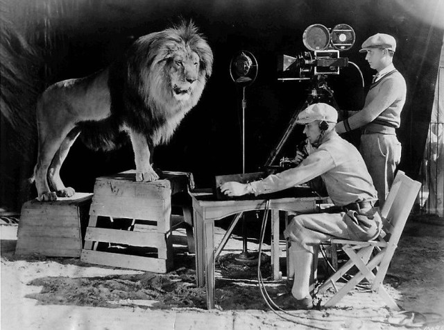Jackie's roar being recorded in December 1928 for use at the beginning of MGM sound films. A sound stage was built around his cage to make the recording. Image source: Wikipedia. Public domain image.