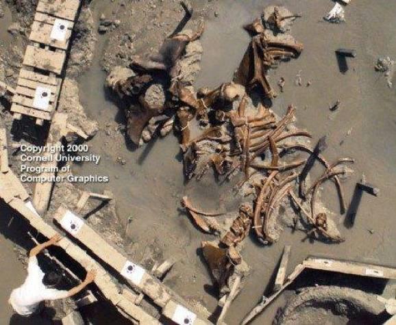 Resultado de imagen para esqueletos de gigantes national geographic