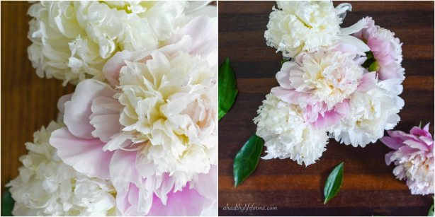 Peonies A Love Affair