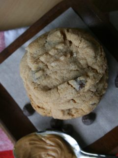 Peanut Butter-Chocolate-Coconut Cookies