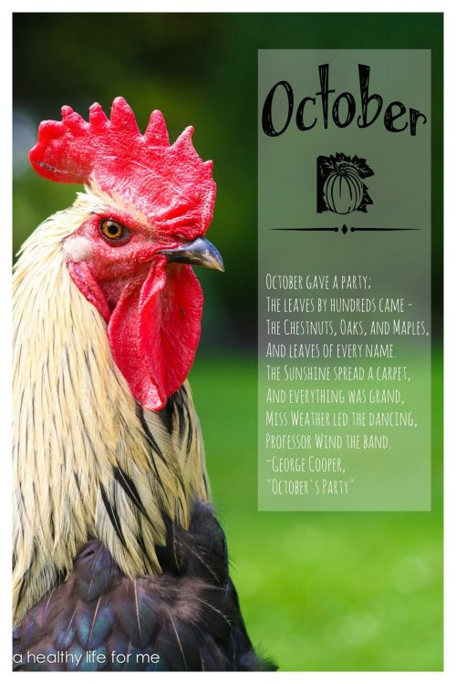 october garden to do list for the organic gardener with ahealthylifeforme.com
