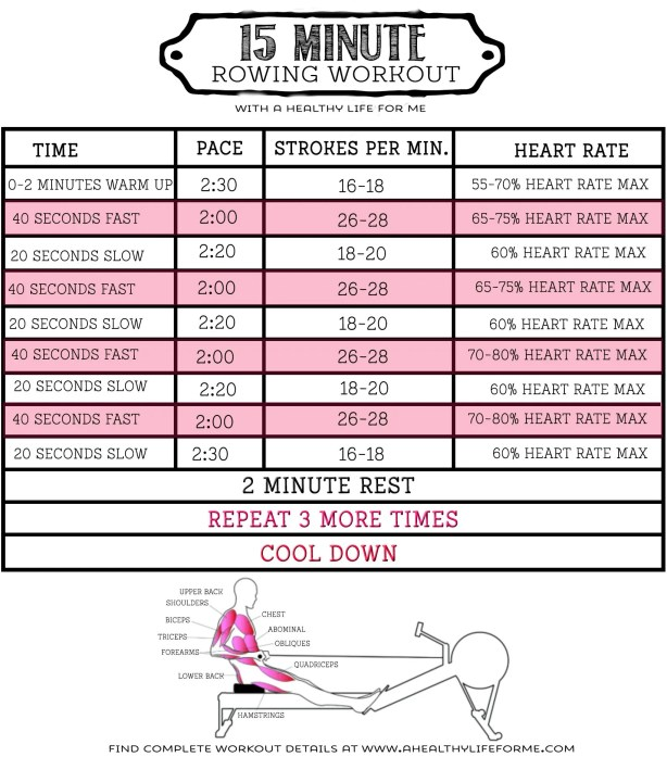 15 Minute Total Body Rowing Workout | 52 Tips for Health and Fitness Success #12; Rowing Workout