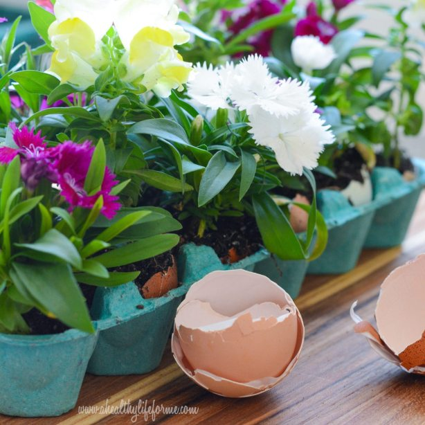 DIY Eggshell Planters #EarthDayProjects