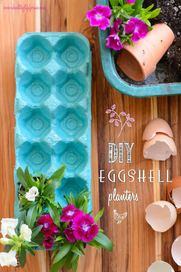 DIY Eggshell planters #EarthDayProjects
