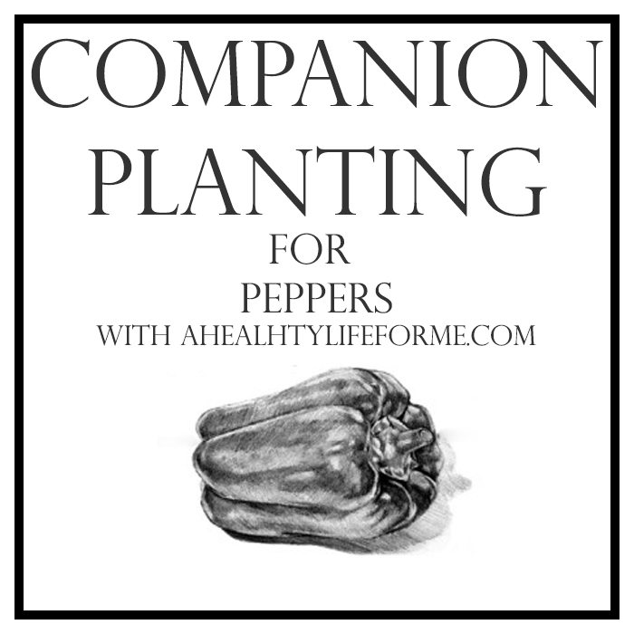 Companion Planting for Peppers   ahealthylifeforme.com