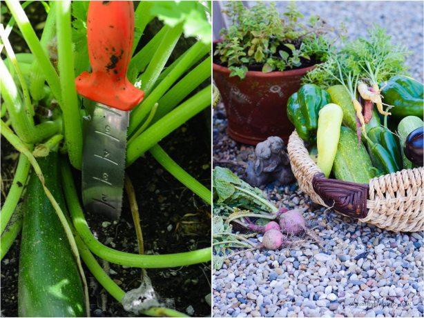 Hori-Hori Gardening tool you will love   ahealthylifeforme.com