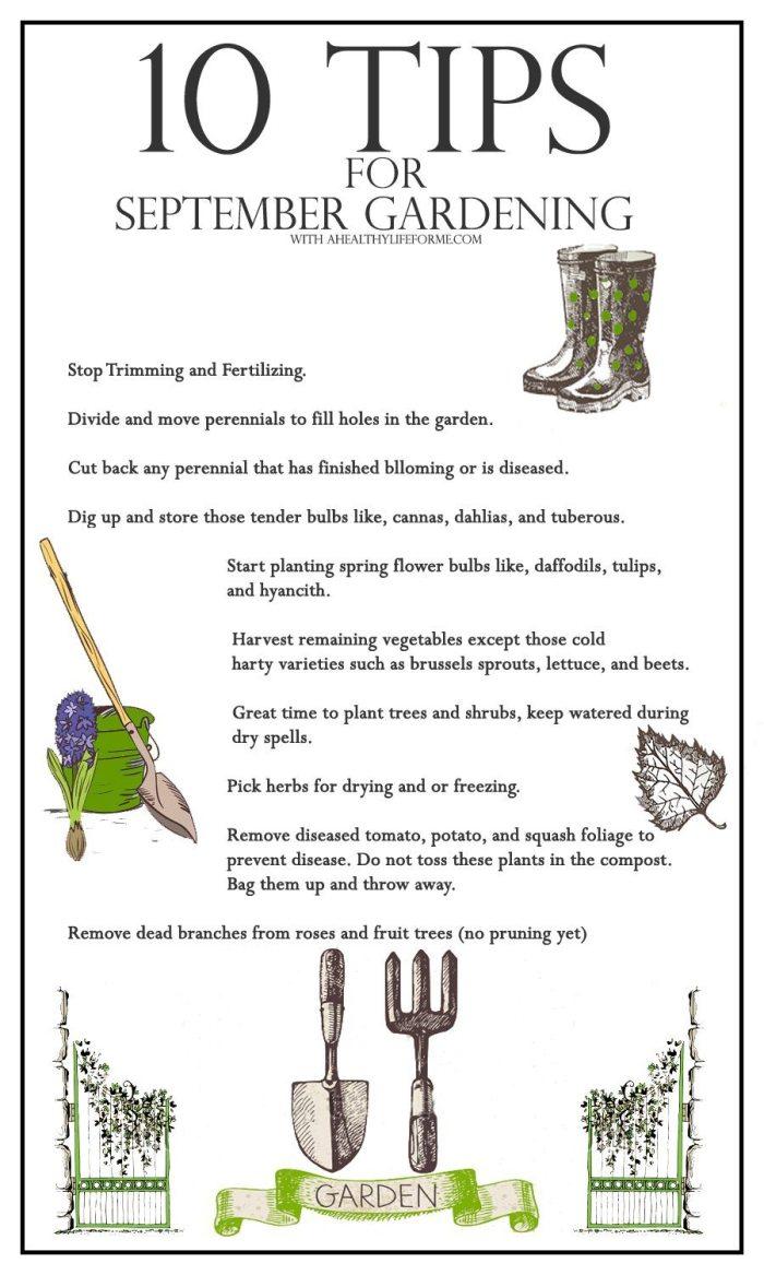 10 Tips for September Gardening | ahealthylifeforme.com