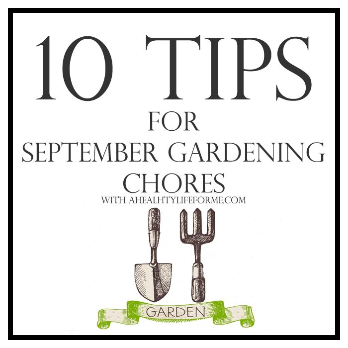 10 Tips for September Gardening | ahealthylifeforme.com