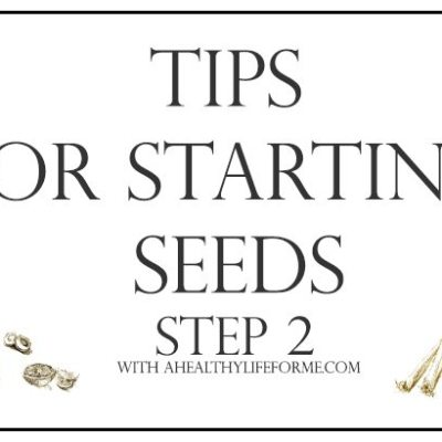 Tips for Starting Seeds Step 2 {growing}
