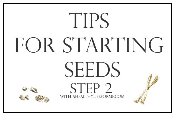 Tips for Starting Seeds for your Vegetable Garden | ahealthylifeforme.com