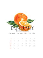 Free January Calendar Wallpaper Download } ahealthylifeforme.com