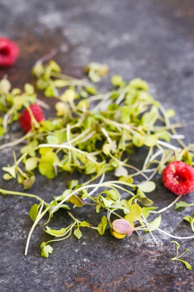 Microgreens Raspberries Walnuts