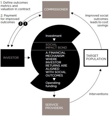 (c) Social Finance 2011