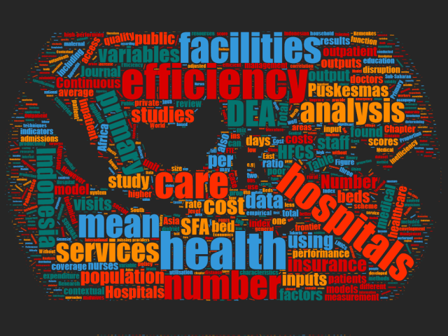 Thesis Thursday: Firdaus Hafidz - The Academic Health Economists' Blog