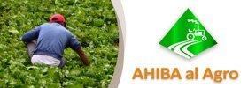 AHIBA al Agro