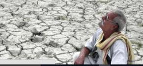 Injdian farmer - Intl Business times