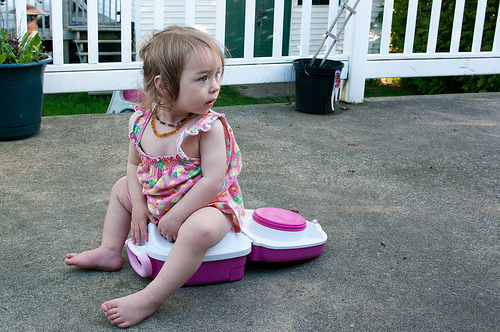 On the carry potty