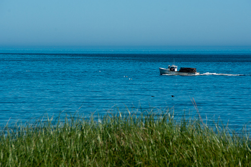 Lobster boat just off the shore...