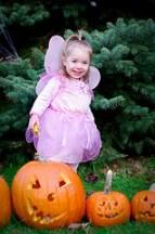 Wilhelmina the fairy princess