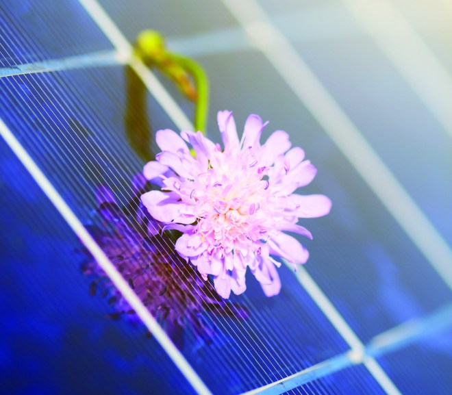 Market opportunities in the solar sector