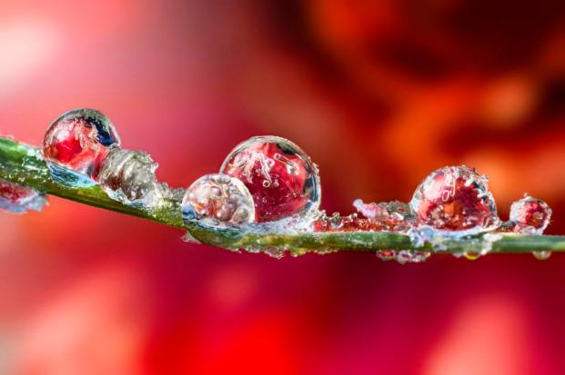 Ever wondered what life is like in miniature? (Photo: Alberto Ghizzi Panizza/Caters News)
