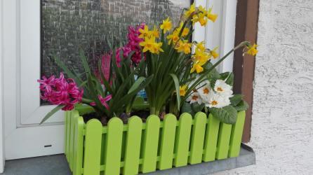 Frühlingsblumen machen das Gästeklofenster auch zu einem Hingucker