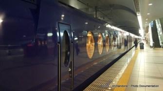 Kereta Menuju ke Namba Station, Osaka