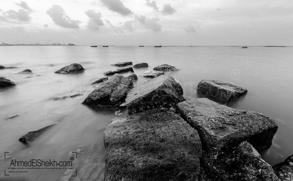 The Rocks of Elmax Alexandria