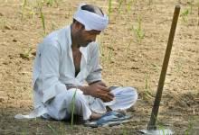 Photo of शेतमाल नोंदणीसाठी शेतकऱ्यांना कागदपत्र सादर करण्याचे आवाहन