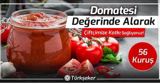 TURK SEKER SALCALIK DOMATES ALIMI
