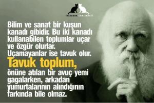 Darvin_der_ki