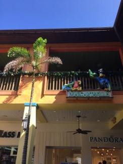 Grand Cayman Piraten Papageien