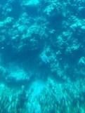 Halb-U-Boot - Schildkröte