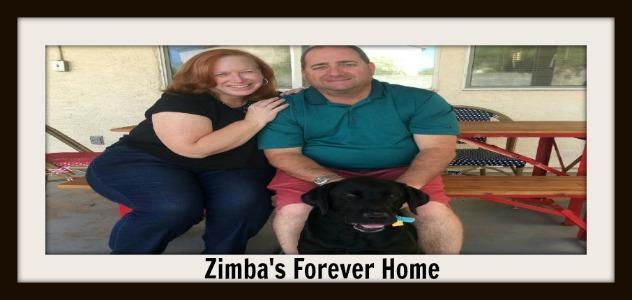 zimba_and_newmomanddad_slider