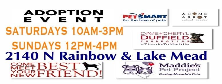 A Home 4 Spot Animal Rescue Las Vegas, NV | Don't Shop, Adopt!