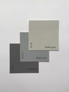 harbor, pigeon, whale gray