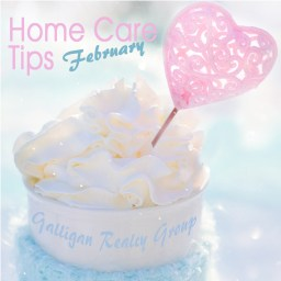 Feb Home Care Tips 1