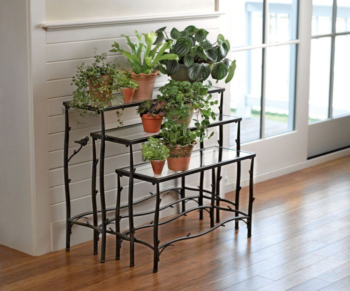 Plant Stands for your darling house plants 1