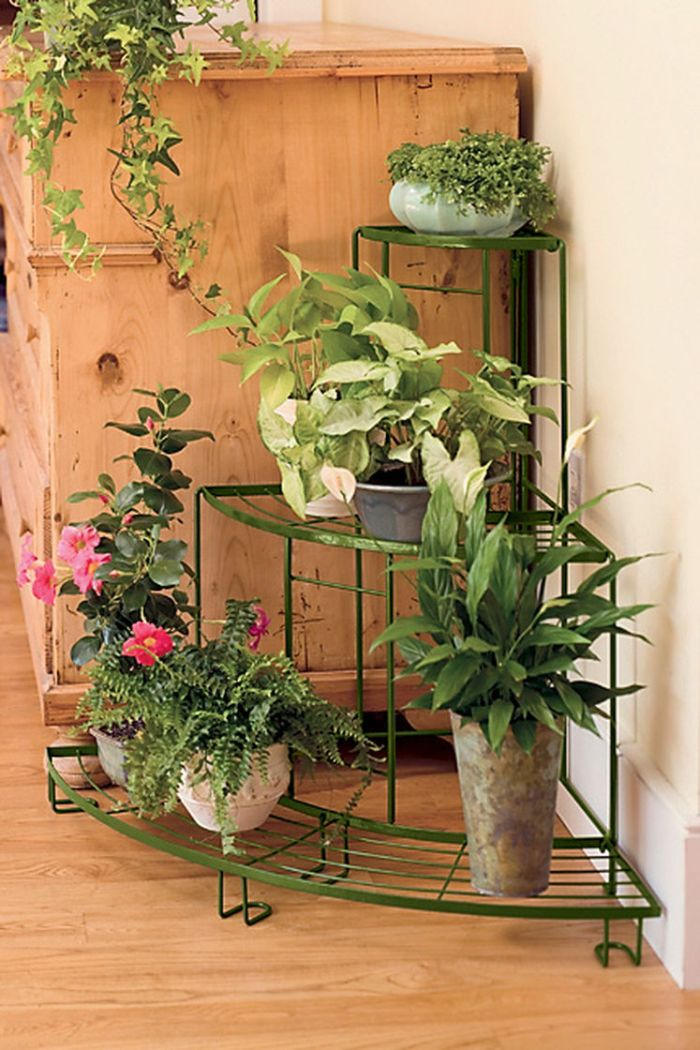 Plant Stands for your darling house plants 3