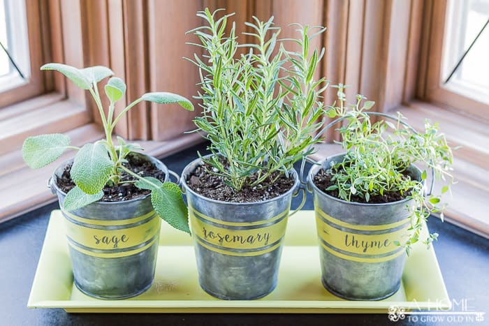 Learn how to age galvanized metal quickly to make these rustic farmhouse herb planters!