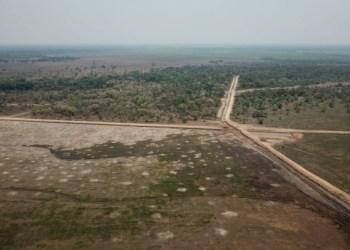 Planta arrocera que opera sin licencia ambiental a orillas de la Laguna Suárez podría ser removida Foto: Tomada del portal de Brújula Digital
