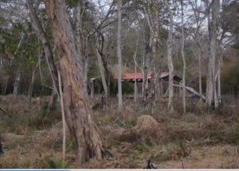 Otra vivienda abandonada en un asentamiento en Roboré. Foto: Comisión Especial ALDSC,