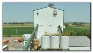 ECOLOGÍA: Hay 12 semilleros similares a Monsanto