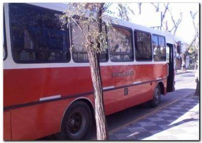 LA PLATA: Rige el uso de cinturón de seguridad en transportes escolares