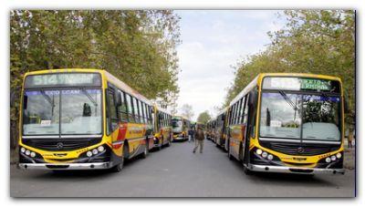 En Necochea transporte público gratuito este domingo