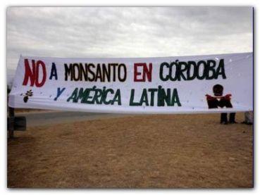 ECOLOGÍA: Tribunal prohíbe a Monsanto construir planta en Córdoba