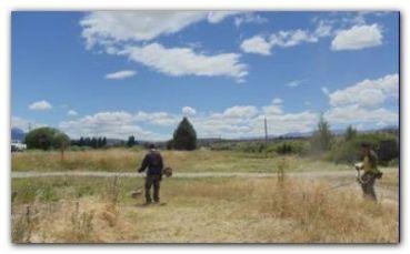 PROCREAR: Buscan sumar terrenos abandonados