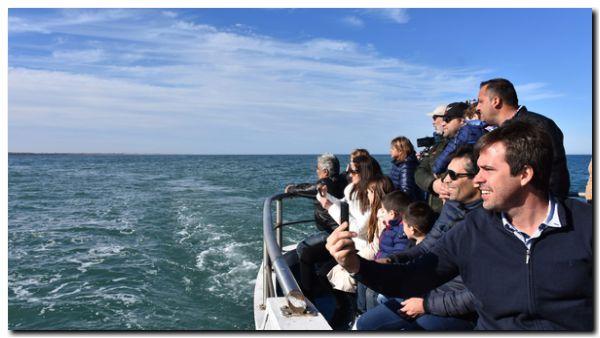 NECOCHEA: Avistaje de ballenas